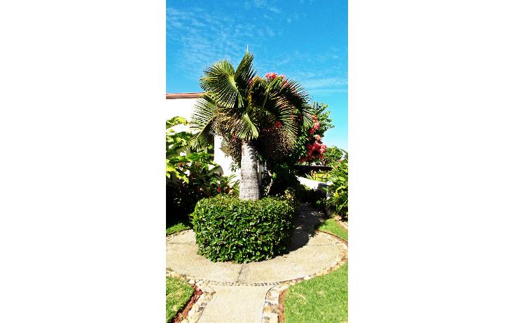 Foto de casa en venta en  , cumbres llano largo, acapulco de juárez, guerrero, 1292329 No. 46