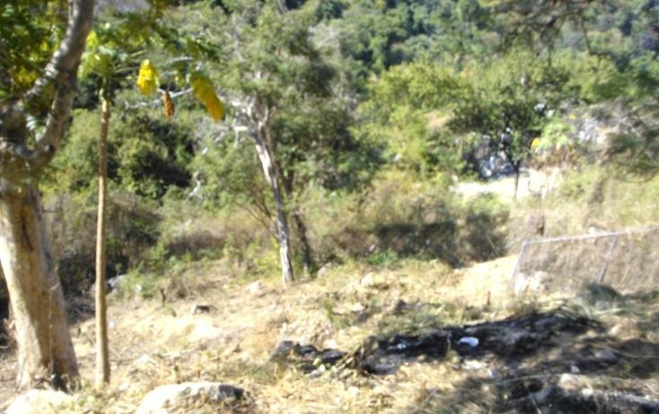 Foto de terreno habitacional en venta en  , cumbres llano largo, acapulco de ju?rez, guerrero, 1864404 No. 06
