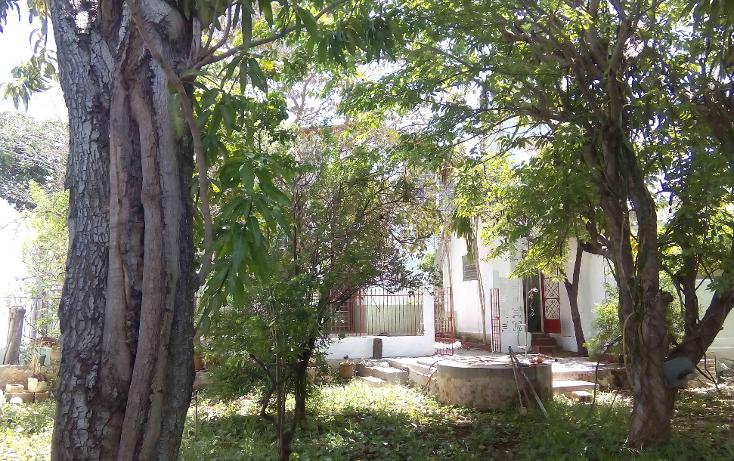 Foto de casa en renta en  , cupules, mérida, yucatán, 1986306 No. 21