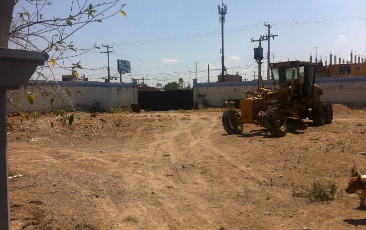 Foto de terreno comercial en renta en  , curtidores, aguascalientes, aguascalientes, 1229451 No. 01