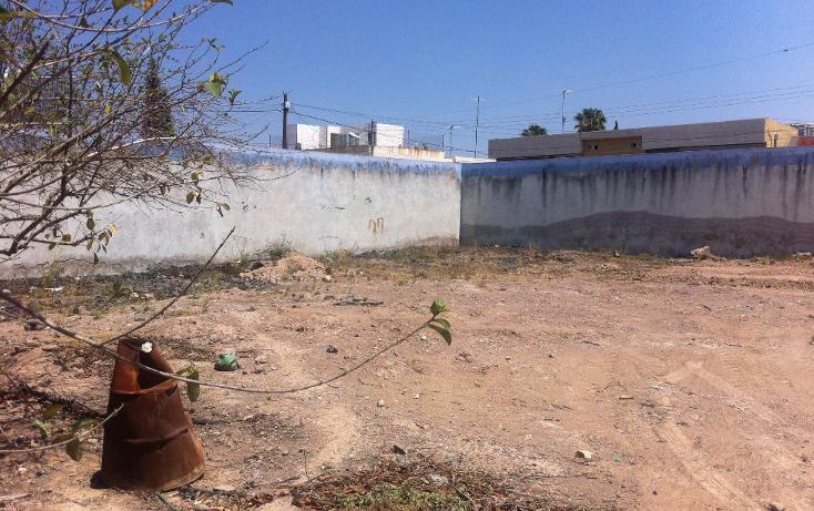 Foto de terreno comercial en renta en  , curtidores, aguascalientes, aguascalientes, 1229451 No. 04