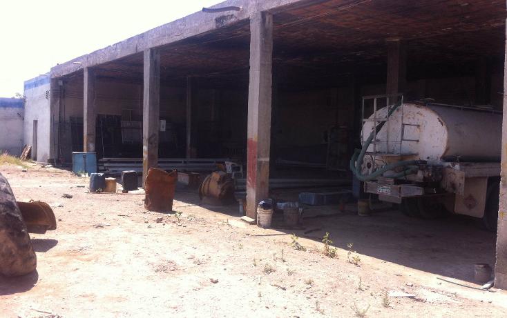 Foto de terreno comercial en renta en  , curtidores, aguascalientes, aguascalientes, 1229451 No. 05