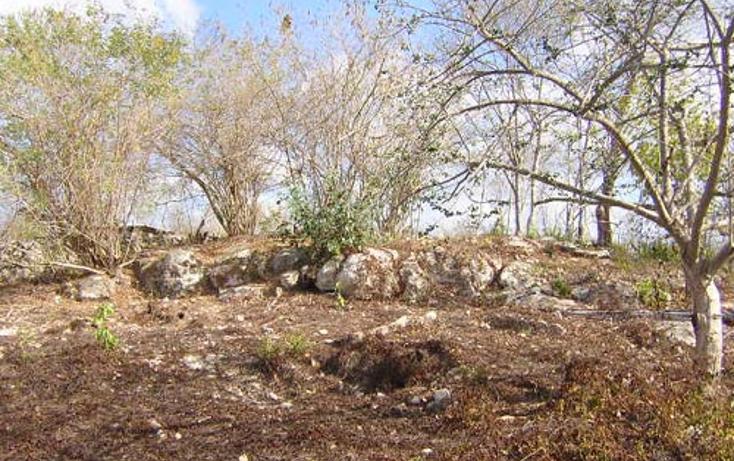 Foto de terreno habitacional en venta en  , cuzama, cuzamá, yucatán, 1259053 No. 05