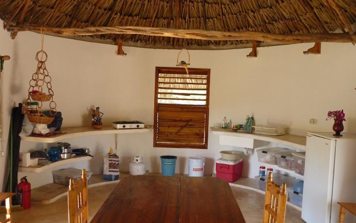 Foto de casa en venta en  , cuzama, cuzamá, yucatán, 1719170 No. 05