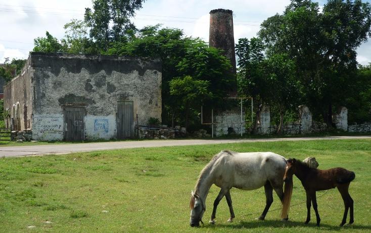 Foto de casa en venta en  , cuzama, cuzamá, yucatán, 1719170 No. 08