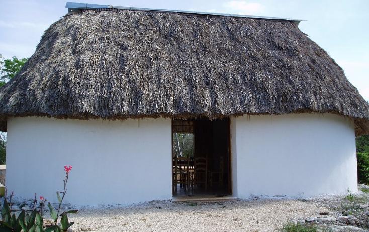 Foto de casa en venta en  , cuzama, cuzamá, yucatán, 1719170 No. 16