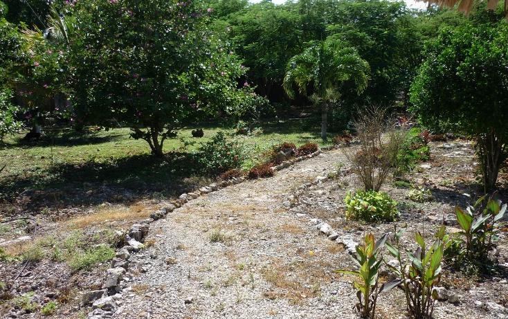 Foto de casa en venta en  , cuzama, cuzamá, yucatán, 1860448 No. 11