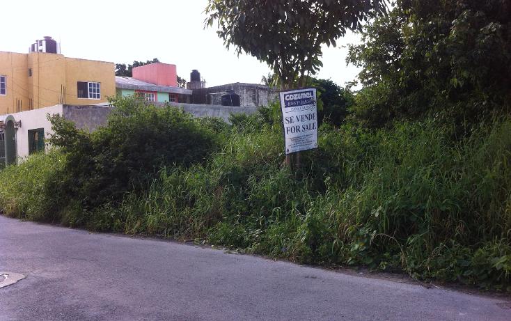 Foto de terreno habitacional en venta en  , cuzamil, cozumel, quintana roo, 943243 No. 02