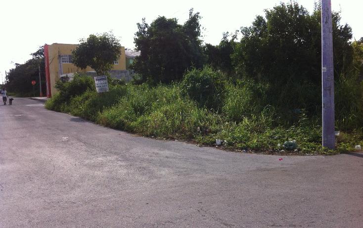 Foto de terreno habitacional en venta en  , cuzamil, cozumel, quintana roo, 943243 No. 03