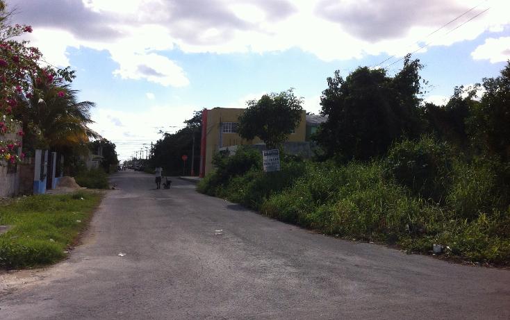 Foto de terreno habitacional en venta en  , cuzamil, cozumel, quintana roo, 943243 No. 05