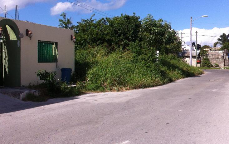 Foto de terreno habitacional en venta en  , cuzamil, cozumel, quintana roo, 943243 No. 08