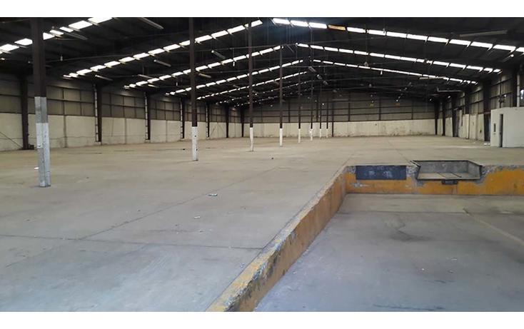 Foto de nave industrial en renta en  , los olivos, tláhuac, distrito federal, 2021897 No. 04
