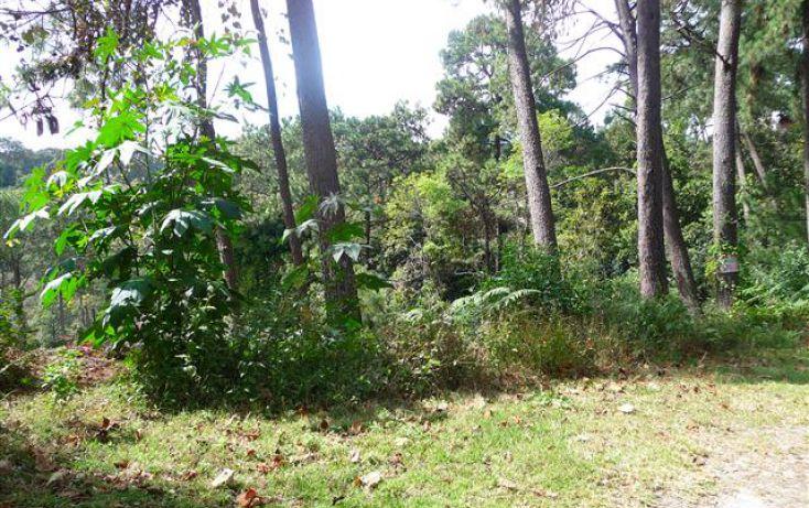 Foto de terreno habitacional en venta en, del bosque, cuernavaca, morelos, 1170097 no 01