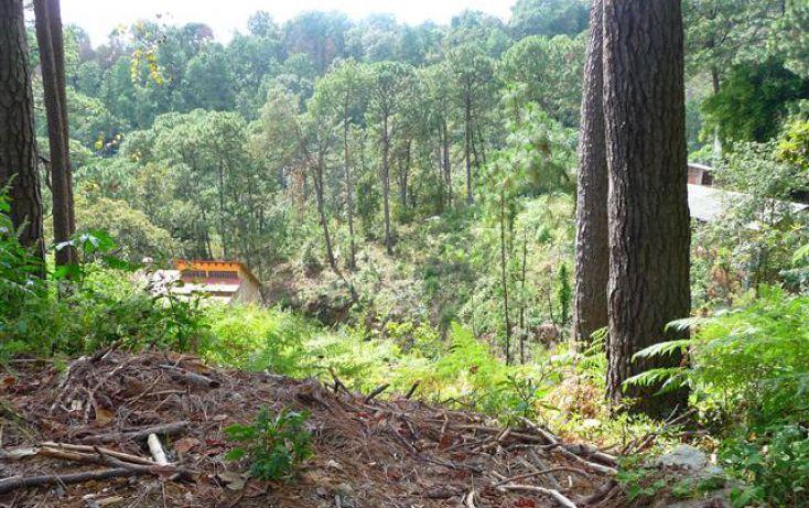 Foto de terreno habitacional en venta en, del bosque, cuernavaca, morelos, 1170097 no 02