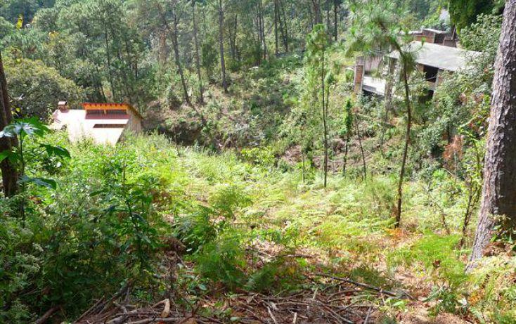 Foto de terreno habitacional en venta en, del bosque, cuernavaca, morelos, 1170097 no 03