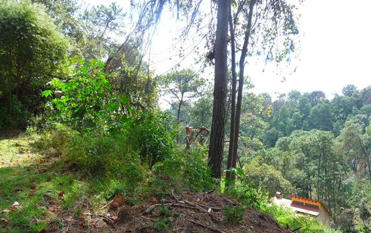 Foto de terreno habitacional en venta en  , del bosque, cuernavaca, morelos, 1170097 No. 04