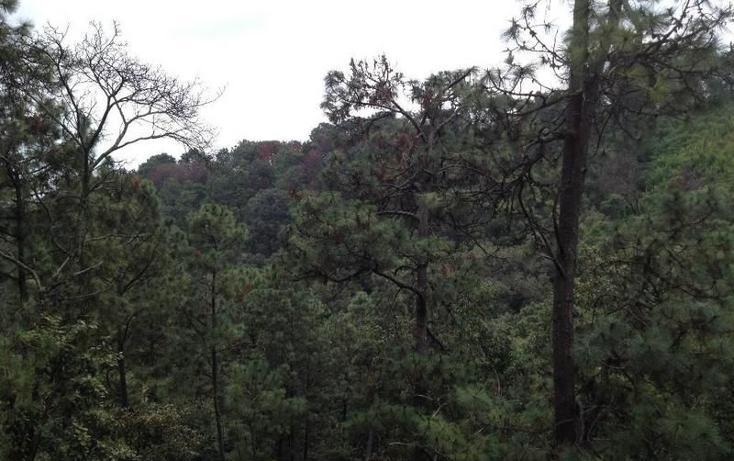 Foto de casa en condominio en venta en  , del bosque, cuernavaca, morelos, 1251587 No. 04