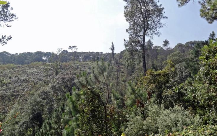 Foto de casa en venta en  , del bosque, cuernavaca, morelos, 1300445 No. 11