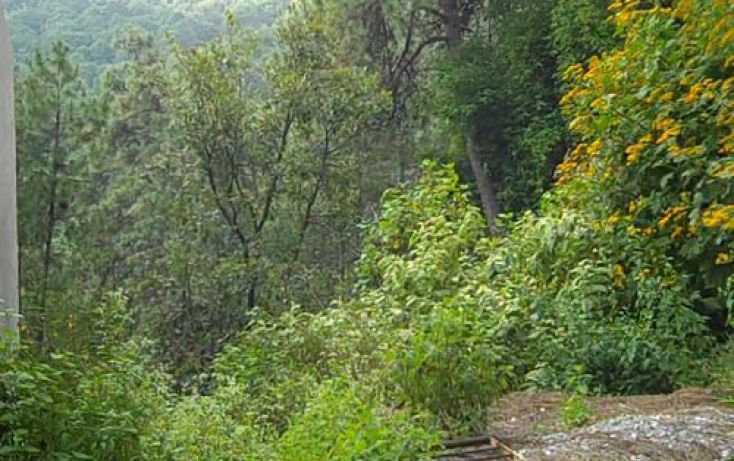 Foto de terreno habitacional en venta en, del bosque, cuernavaca, morelos, 2019885 no 02
