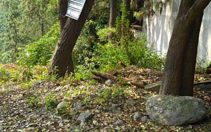 Foto de terreno habitacional en venta en, del bosque, cuernavaca, morelos, 2019885 no 06