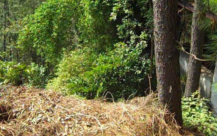 Foto de terreno habitacional en venta en, del bosque, cuernavaca, morelos, 2019885 no 08