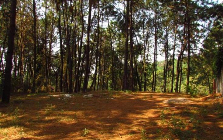 Foto de casa en venta en  , del bosque, cuernavaca, morelos, 2031602 No. 02