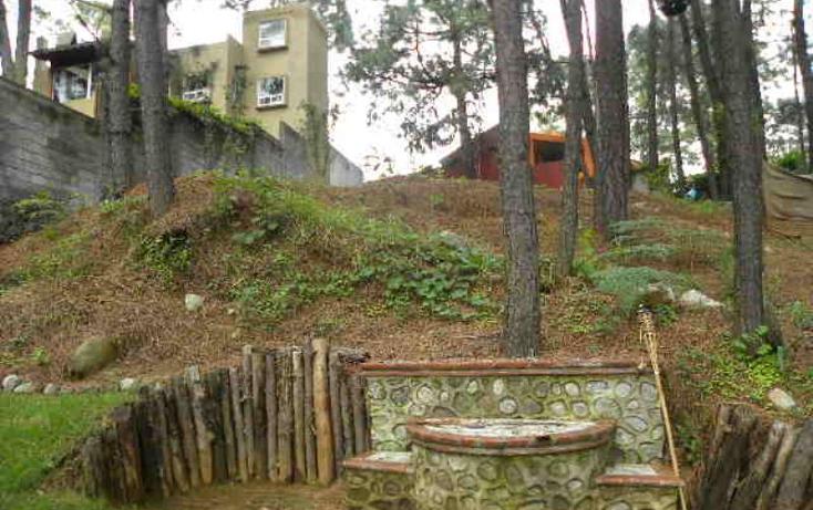 Foto de casa en venta en  , del bosque, cuernavaca, morelos, 2031602 No. 09
