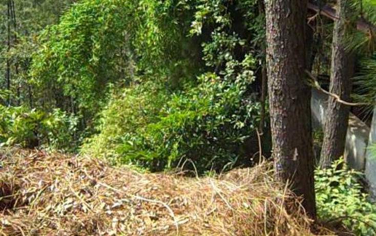 Foto de terreno habitacional en venta en  , del bosque, cuernavaca, morelos, 399195 No. 08