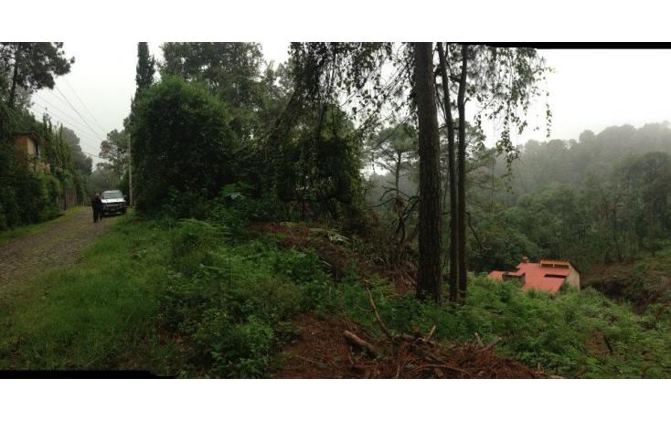 Foto de terreno habitacional en venta en del bosque, del bosque, cuernavaca, morelos, 632650 no 04