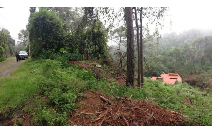 Foto de terreno habitacional en venta en del bosque, del bosque, cuernavaca, morelos, 632650 no 06