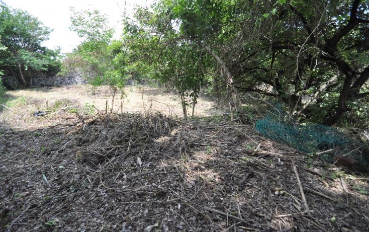 Foto de terreno habitacional en venta en del campesino, las fincas, jiutepec, morelos, 489183 no 03