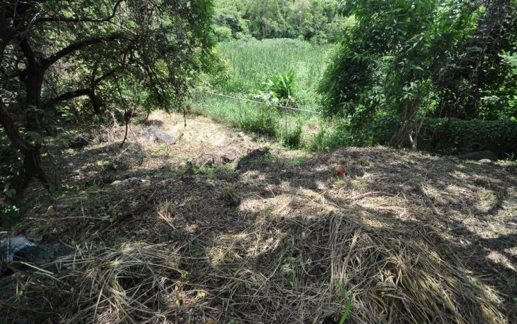Foto de terreno habitacional en venta en del campesino, las fincas, jiutepec, morelos, 489183 no 07