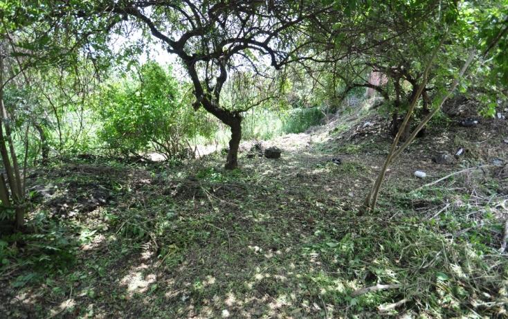 Foto de terreno habitacional en venta en del campesino, las fincas, jiutepec, morelos, 489183 no 08