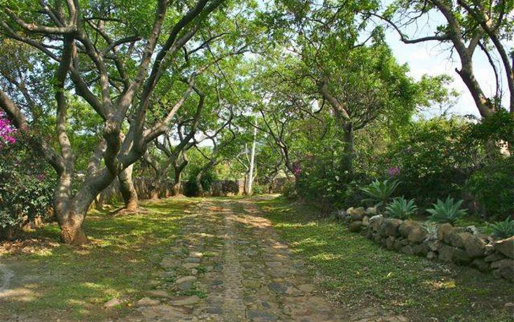 Foto de rancho en venta en  , del carmen, tepoztlán, morelos, 1532784 No. 15
