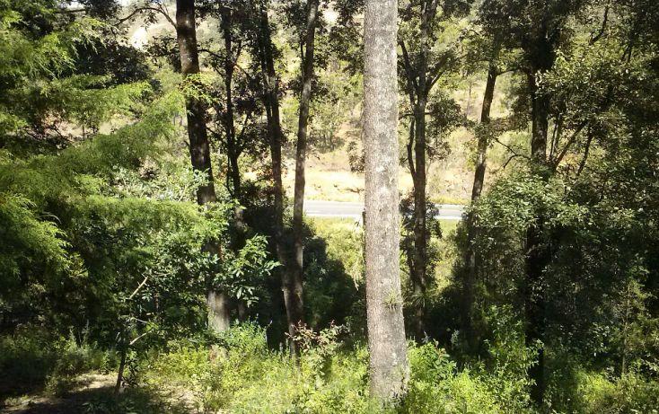 Foto de terreno habitacional en venta en, del fortín, temascaltepec, estado de méxico, 1984468 no 01