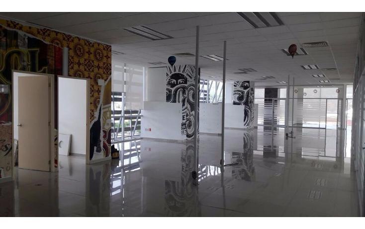 Foto de oficina en renta en  , del lago, cuernavaca, morelos, 1834438 No. 10