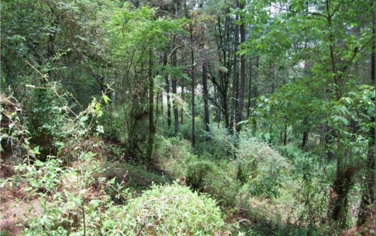 Foto de terreno habitacional en venta en, del santuario, san cristóbal de las casas, chiapas, 448864 no 09