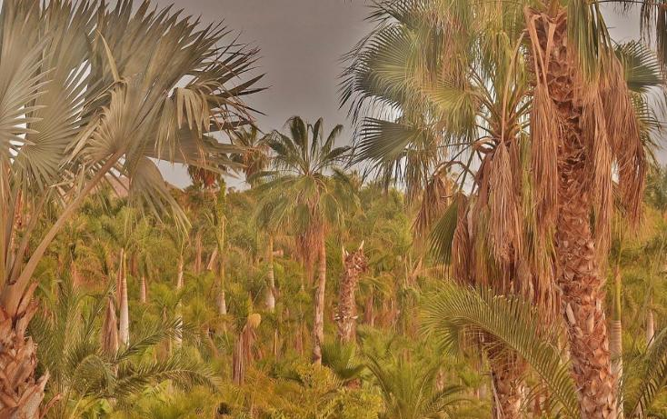 Foto de terreno habitacional en venta en  , del sol, la paz, baja california sur, 1746782 No. 04
