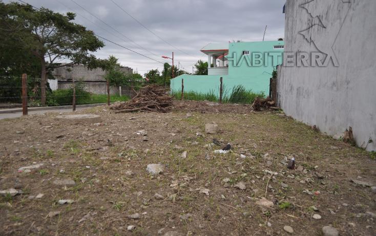 Foto de terreno comercial en renta en  , del valle, tuxpan, veracruz de ignacio de la llave, 1301997 No. 03