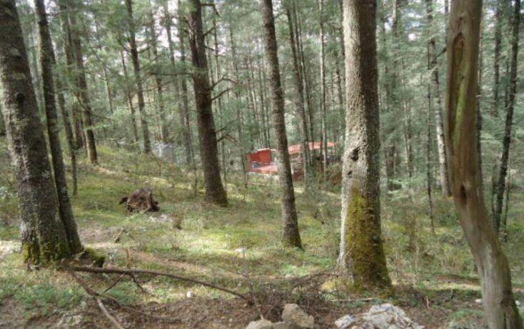 Foto de terreno habitacional en venta en, del viento, mineral del monte, hidalgo, 1158123 no 02