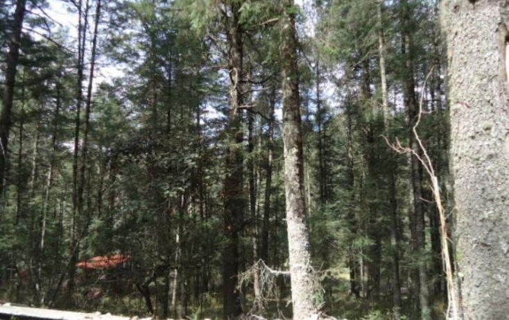 Foto de terreno habitacional en venta en, del viento, mineral del monte, hidalgo, 1158123 no 05