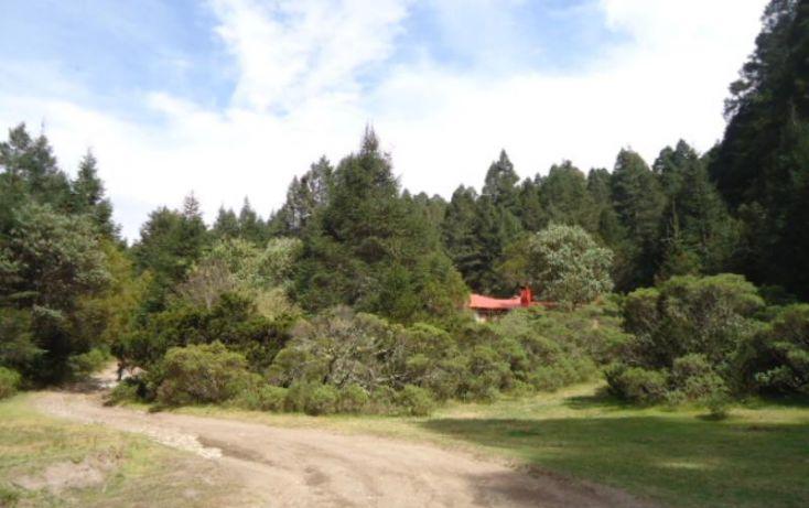 Foto de terreno habitacional en venta en, del viento, mineral del monte, hidalgo, 1158123 no 08