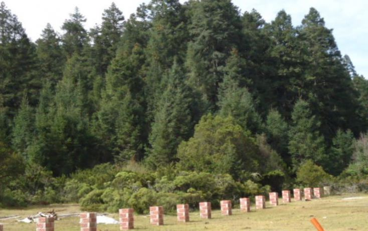 Foto de terreno habitacional en venta en, del viento, mineral del monte, hidalgo, 1158123 no 14