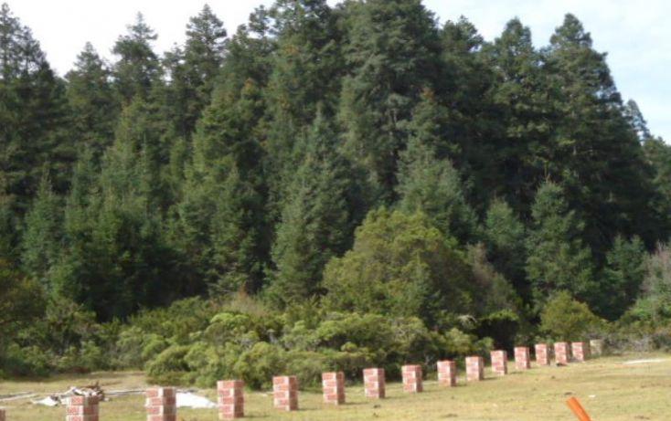 Foto de terreno habitacional en venta en, del viento, mineral del monte, hidalgo, 1332485 no 03