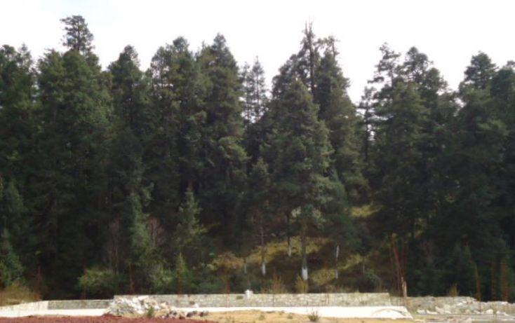 Foto de terreno habitacional en venta en, del viento, mineral del monte, hidalgo, 1332485 no 11