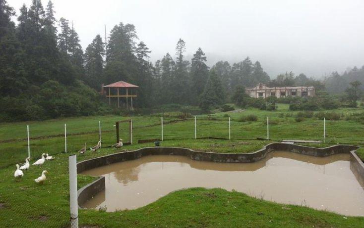 Foto de terreno habitacional en venta en, del viento, mineral del monte, hidalgo, 1371261 no 05