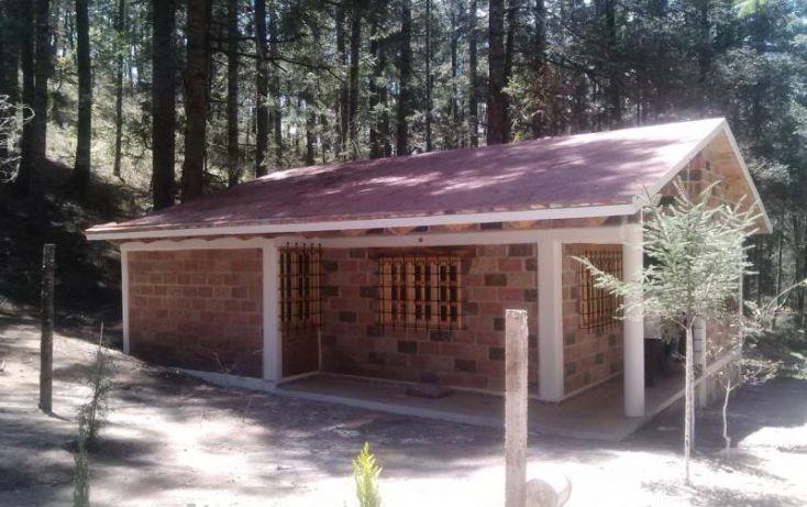 Foto de terreno habitacional en venta en, del viento, mineral del monte, hidalgo, 481778 no 15