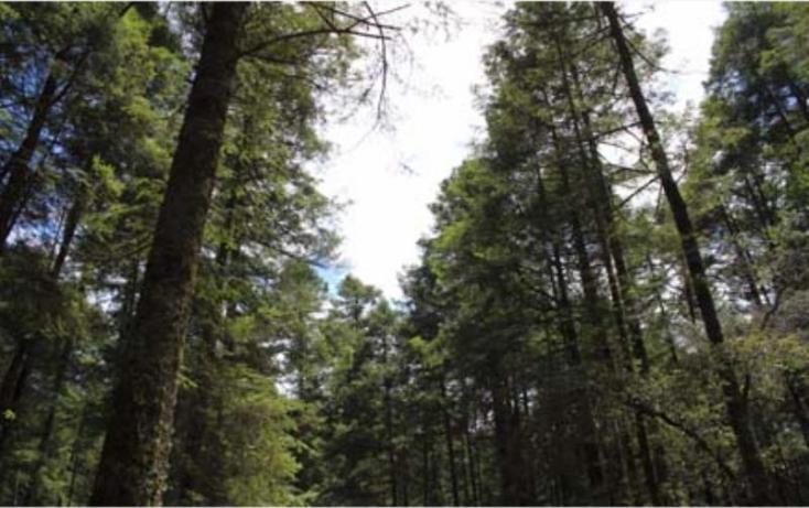 Foto de terreno habitacional en venta en, del viento, mineral del monte, hidalgo, 494951 no 14