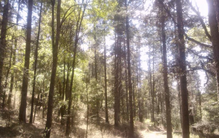 Foto de terreno habitacional en venta en, del viento, mineral del monte, hidalgo, 494951 no 61