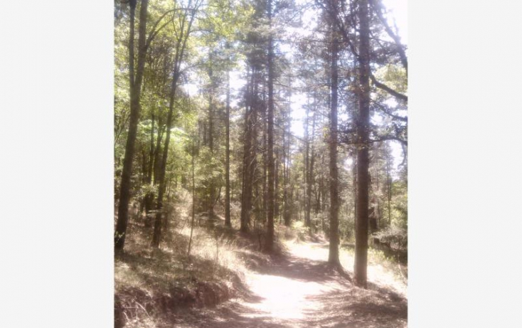 Foto de terreno habitacional en venta en, del viento, mineral del monte, hidalgo, 580456 no 60